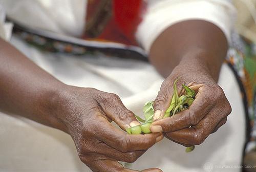African woman peas