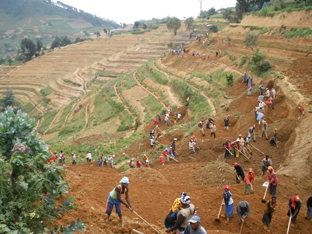 Thurow_rwanda farmers_small