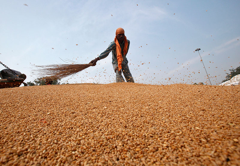 Globalag_grains_reuters_april252014
