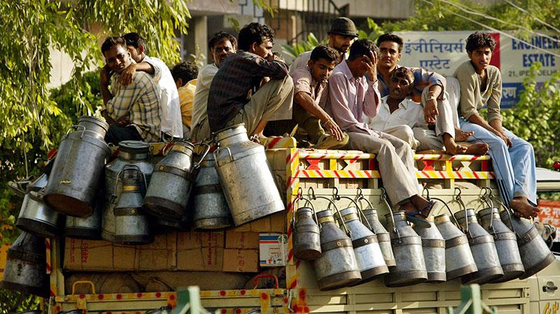 India_milk